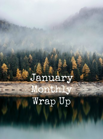 January Monthly Wrap Up